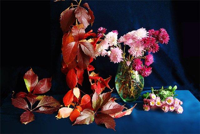 autumn 17a