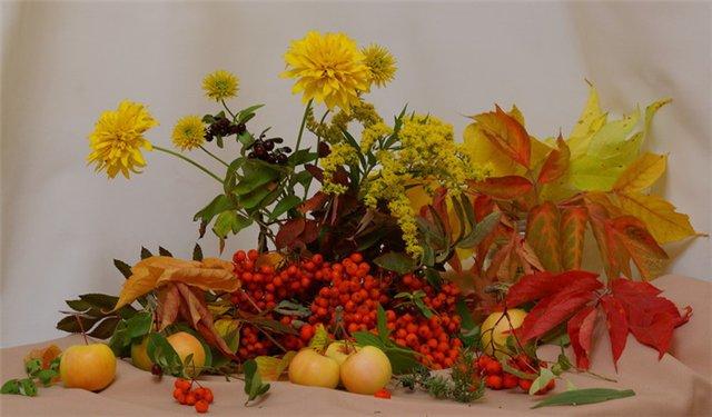 autumn 20a