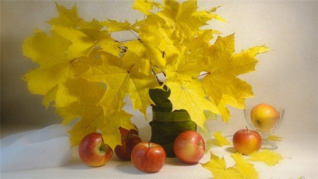 autumn 8a