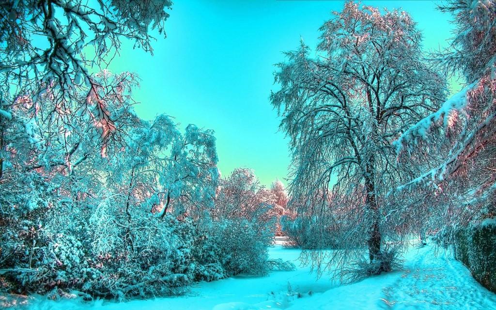 зима 7