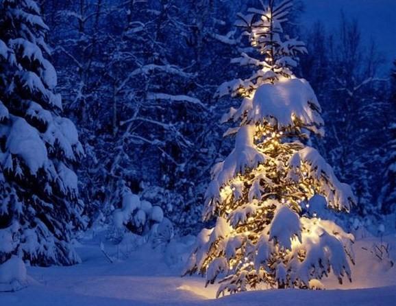 зима 8