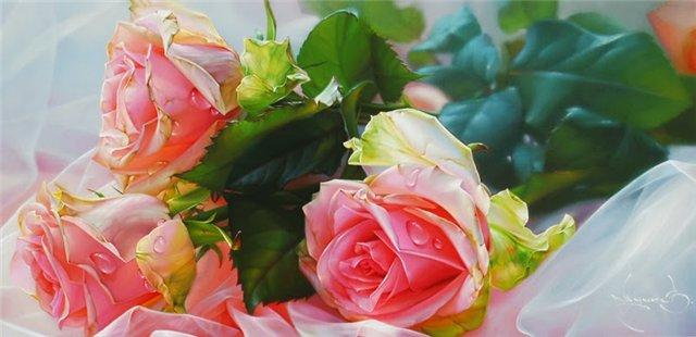 rose 16a
