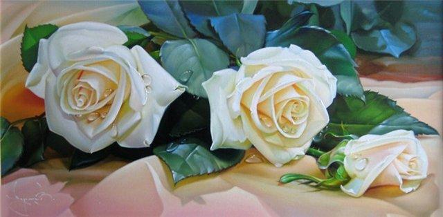 rose 6a